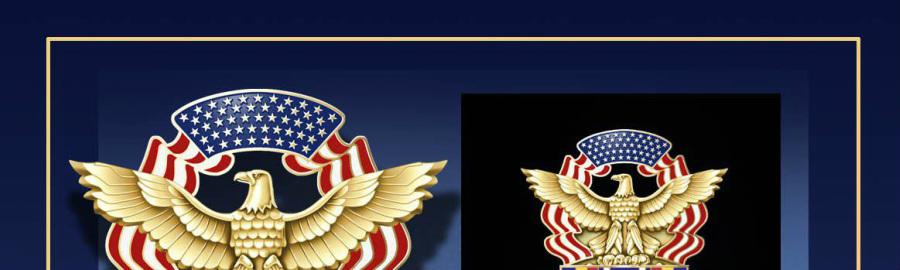 Global War on Terrorism Badge - Eagle Chapter Air Force